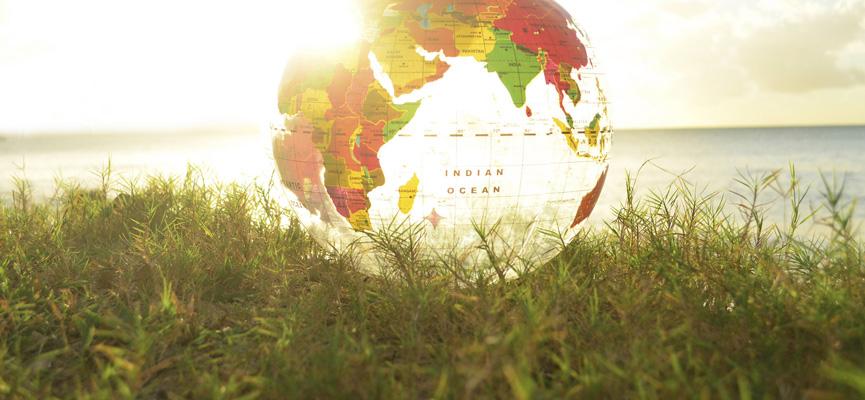 Mappamondo trasparente sull'erba