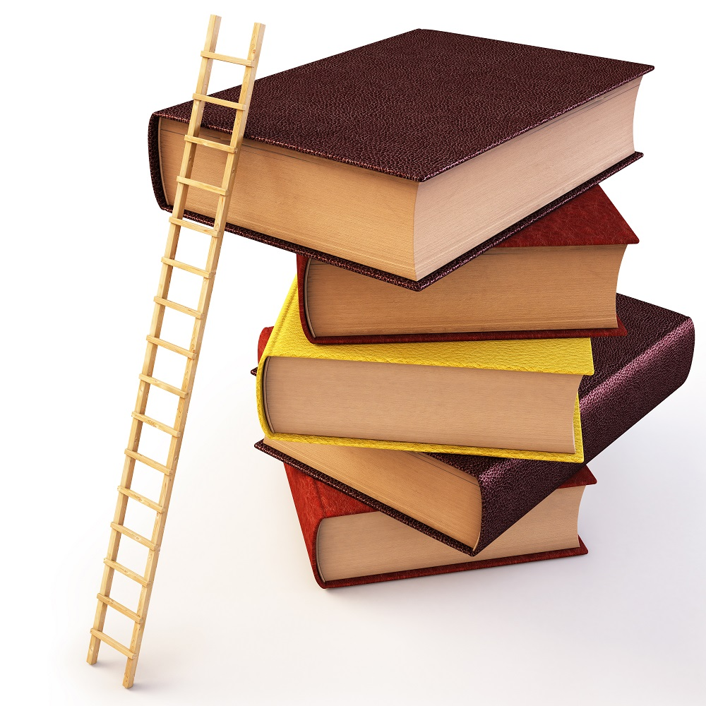 A ladder leans against a stack of books