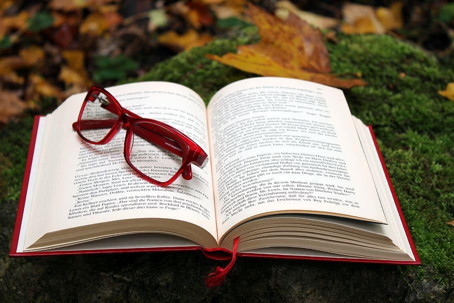 Cómo aprender lengua y literatura