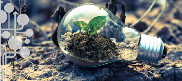Themenschwerpunkt Berufsbildung für nachhaltige Entwicklung auf EPALE