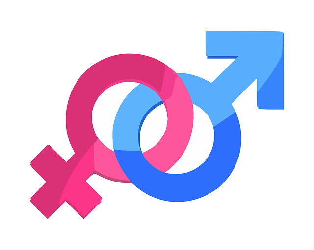 Gender (c) Pixabay Lincense