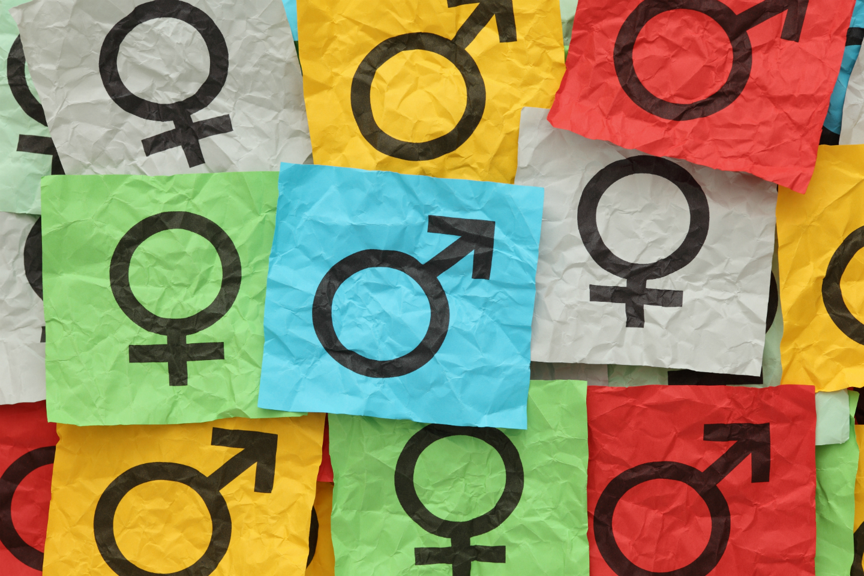 EPALE gendered literacy