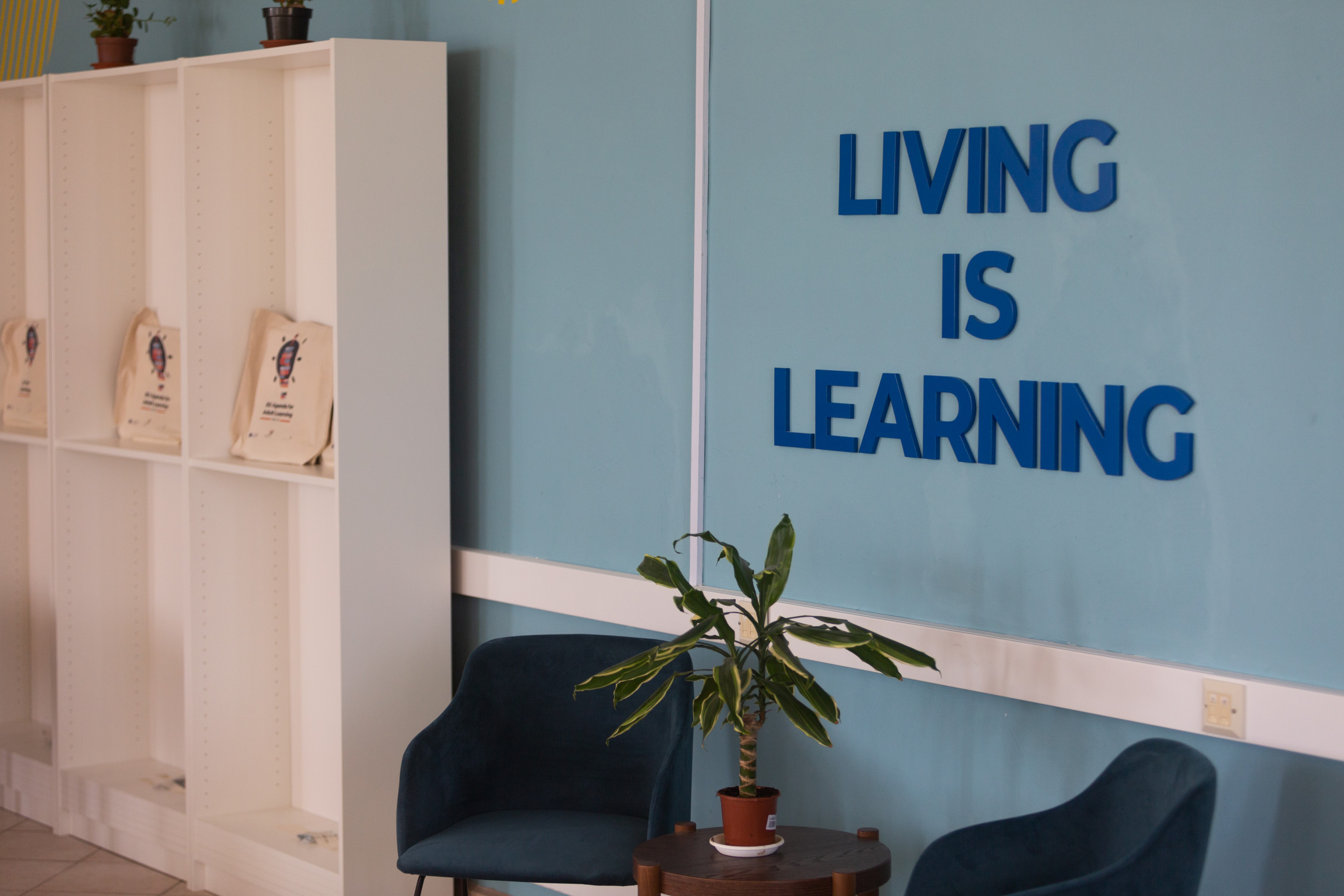 Living is learning photo