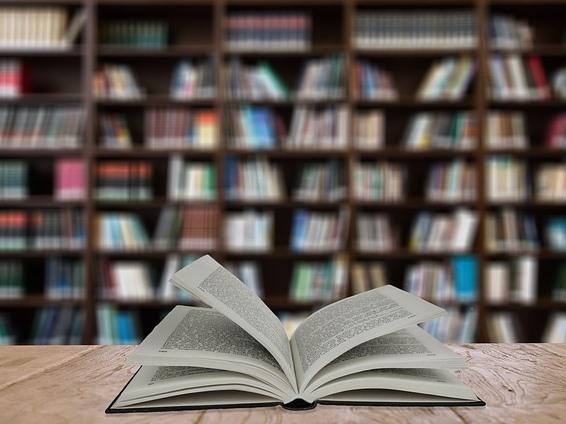 LIB(e)RO - Lernplattform zur Etablierung von Bibliotheken als interkulturelle Lernorte für minderjährige Flüchtlinge