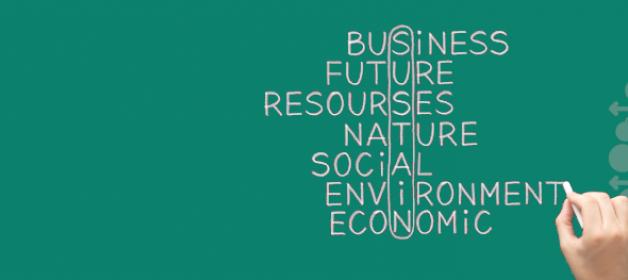 EPALE Themenfokus Nachhaltigkeit