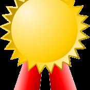 Das Bild zeigt eine stilisierte Medaille.