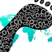 Ecological Footprint: Nachhaltigkeit Blogbeitrag_Mona Schliebs auf EPALE