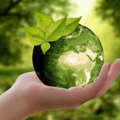 Das Bild zeigt eine Hand, die eine grüne Weltkugel vor einem unscharfen Naturhintergrund hält.