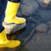 Keltaiset kumisaappaat vedessä.