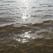 vanduo