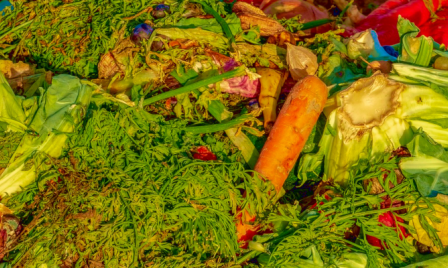 picture_food_waste_EPALE