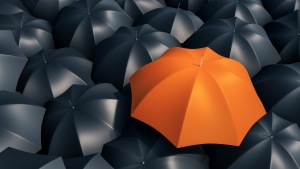 Orange umbrella in amongst black umbrellas